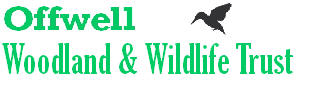 The Offwell Woodland & Wildlife Trust